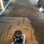 a clean carpet Whidbey WA 14