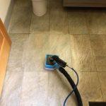 a clean carpet Whidbey WA 16