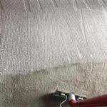 a clean carpet Whidbey WA 19
