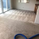 a clean carpet Whidbey WA 23
