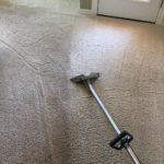 a clean carpet Whidbey WA 5