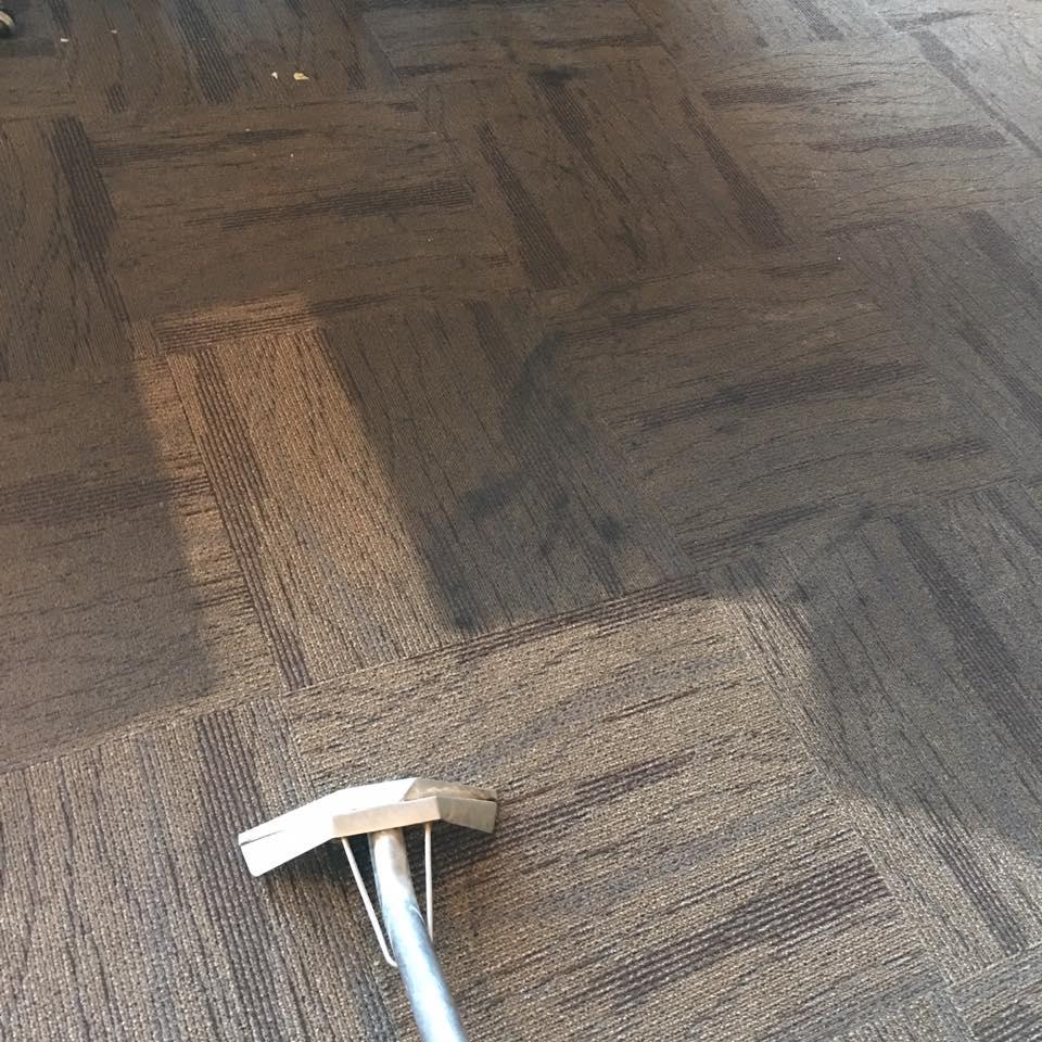 a clean carpet Whidbey WA 6