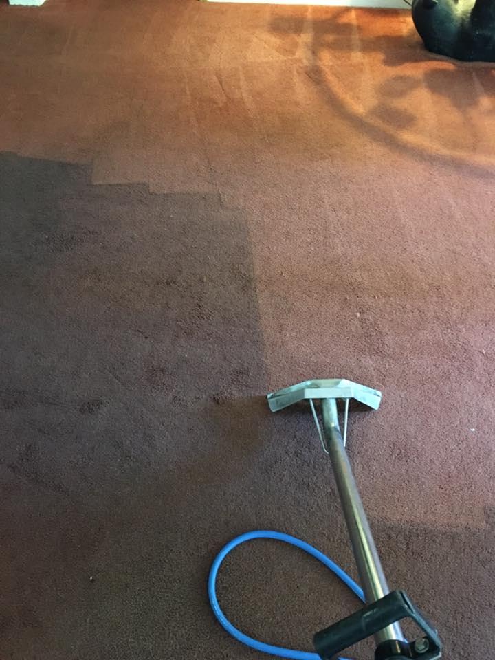 a clean carpet Whidbey WA 7