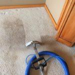 a clean carpet Whidbey WA 9